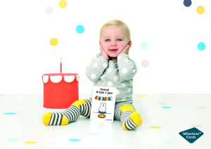 milestone baby cards nijntje miffy